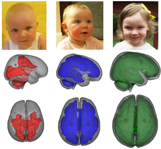 Breastfeeding babies brain