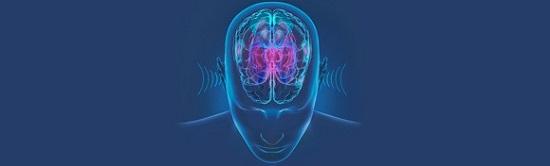 hearing_brain